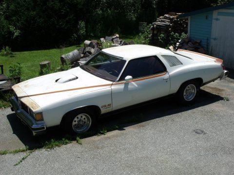 1977 Pontiac Le Mans Can Am Sport Coupe for sale